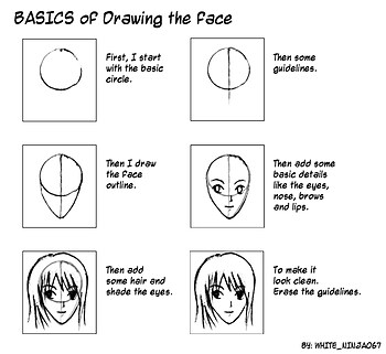 basic face tutorial