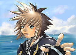 Sora in salt waves