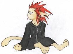 Axel Kitty