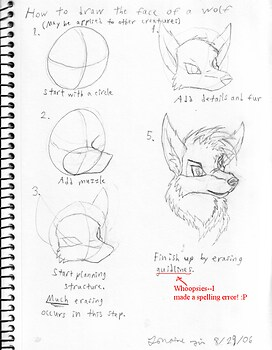 Simple Tutorial to How To Draw A Wolf's Head