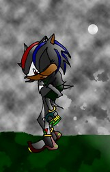 Shadow and Maria the Hedgehog