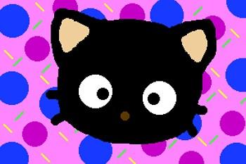 Choco cat