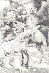Horse Stipling