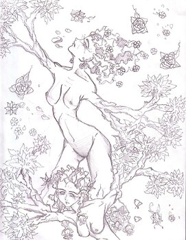 Lady's of The Trees