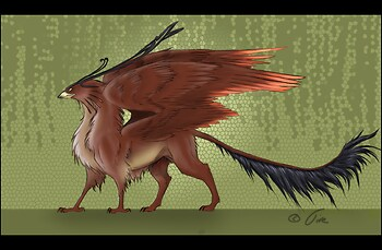 Some Gryphon...