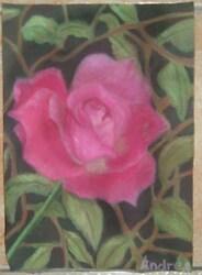 A Rose..[*]