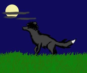 binx as a wolf