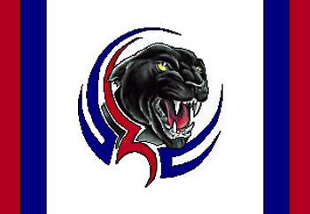 Panther Flag
