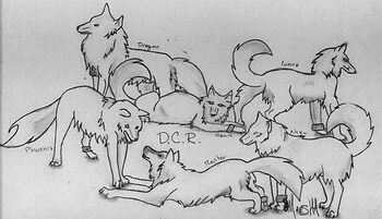 DCR - Not Colored