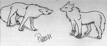Phoenix and Hawk - Not Colored
