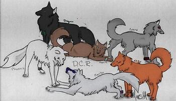 DCR - Colored