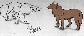 Phoenix and Hawk - Colored