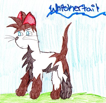whiskertail contest entry