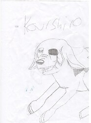 anime kourshiro