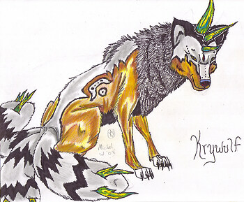 Krywulf *Pokemon contest*
