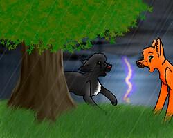 Firepaw and Ravenpaw
