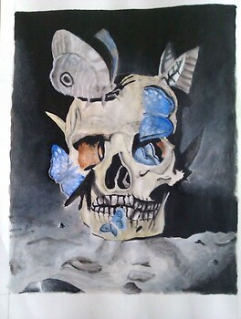 Skull and butterflies