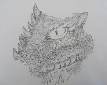 The Unfinished Dragon