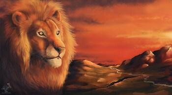 Gold Lion 2013