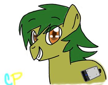 Random Fan Pony