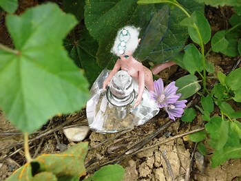 The little pixie and the diamond flask