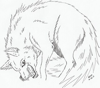 Princess Mononoke Wolf