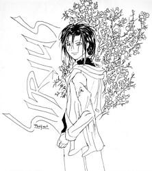Sirius blossom